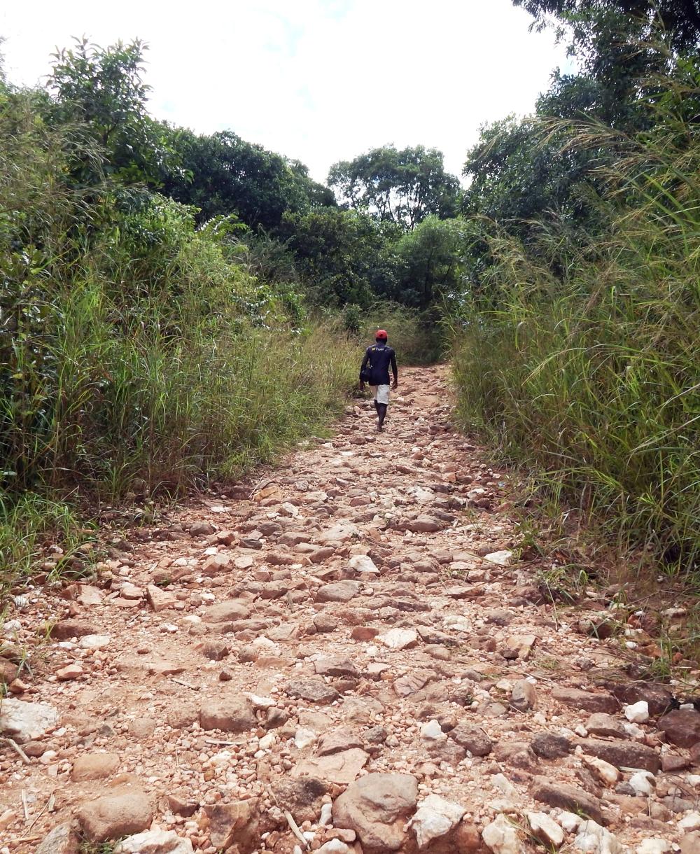 terrain71
